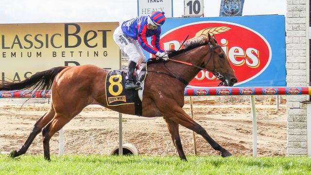 ATO Still has Racehorses In Its Sights